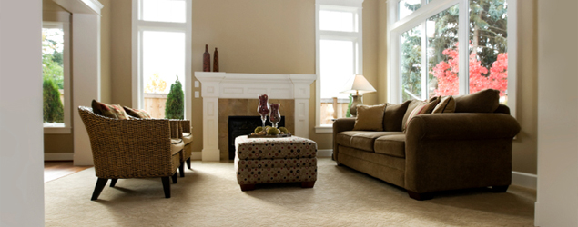 carpet cleaning canton Ga